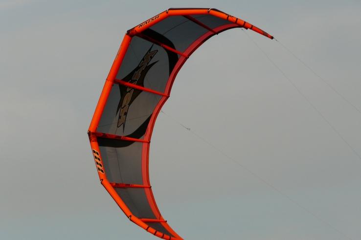 29-drachen