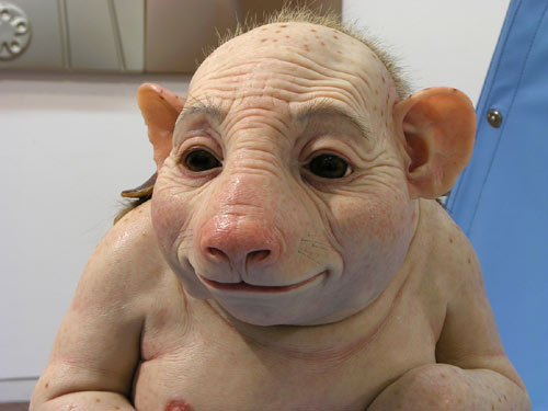 ´Was kuckst du so.`´ Hast du dich gegen die Schweinegrippe impfen   lassen.`´Ja, warum.`jpg