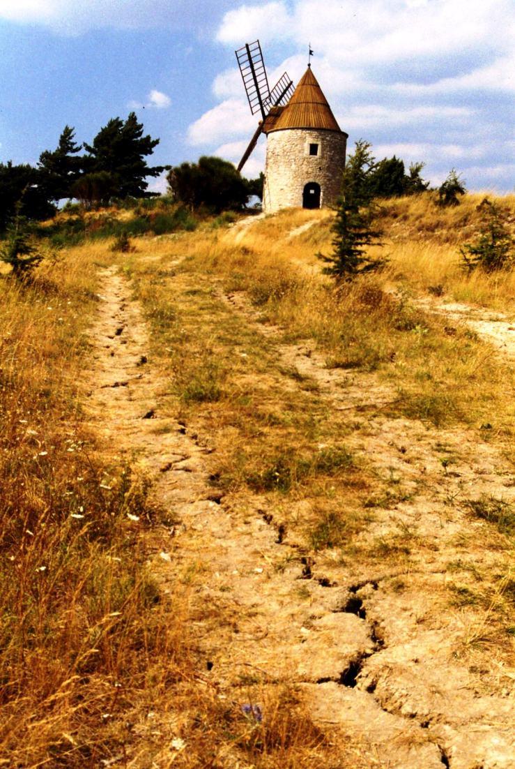 Dürre am Lubéron in der Provence/Südfrankreich 1996. Foto © Dietrich Stahlbaum