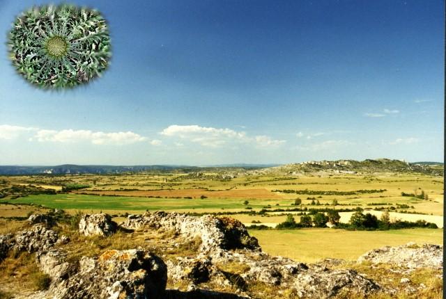 Larzac, Landschaft mit Grüner Sonne