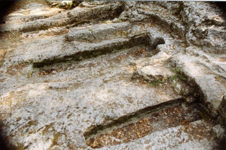 Felsengräber bei der Prieuré de Carluc am Lubéron / Alpes de Haute) Provence