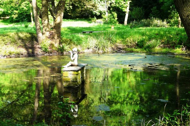 Auf einem Teich bei Marl NRW