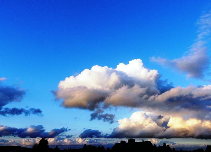 Abend über unsern Dächern. 1. September 19 h 55