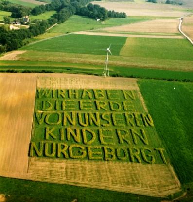 Auf dem Maisfeld des Bioland-Bauern Theo Schürmann in Oer-Erkenschwick (NRW)