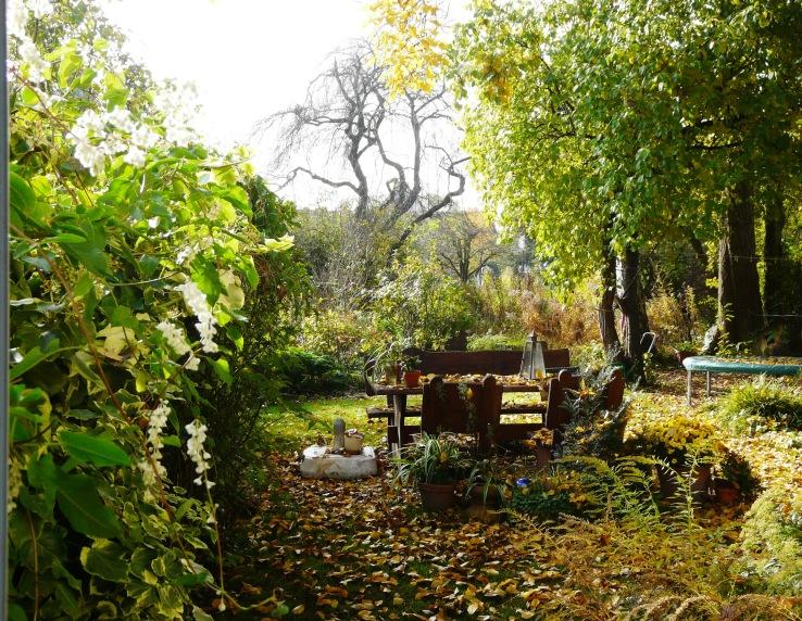 Unser Garten am 30. OKtober