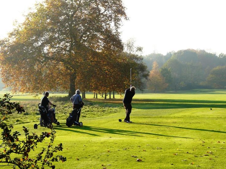Golfer in Westerwinkel