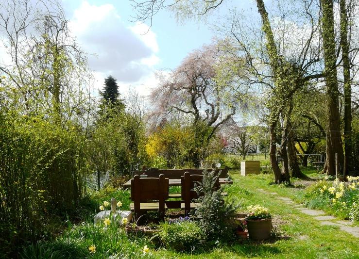 Unser Garten im Frühling
