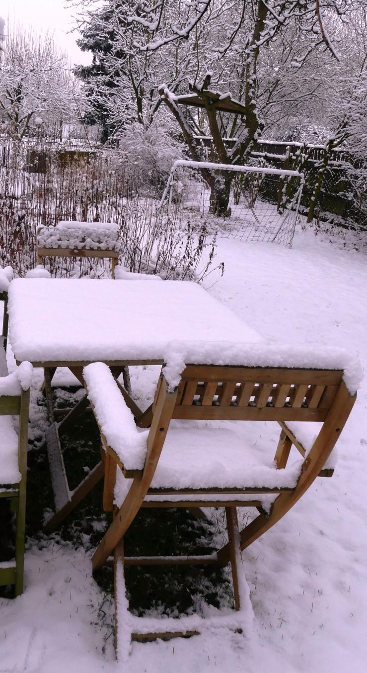 Später Winter in unserm Garten am 31.01.2019 -6-